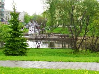 обои Парк в мае фото