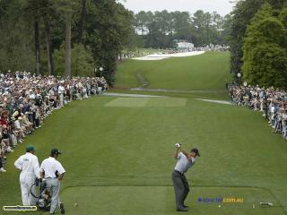обои Спорт гольф фото