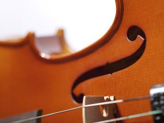 обои Струны скрипки фото