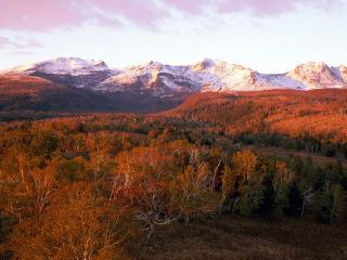 обои Осень в горах и лесу фото