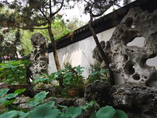 обои Причудливые камни в саду фото
