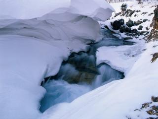 обои Зимний ручей пробиваясь сквозь лёд и снег фото