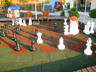 обои Шахматы в полный рост фото