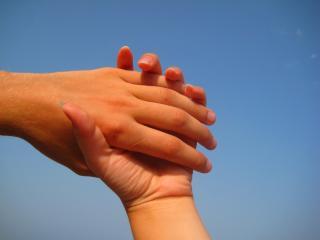 обои Руки любимых фото