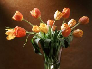 обои Тюльпаны в вазе фото