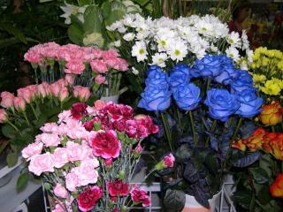 обои Цветочный магазин фото