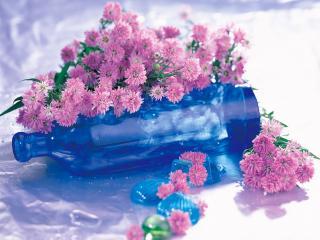 обои Цветы на бутылке фото