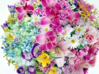 обои Шар из цветов фото