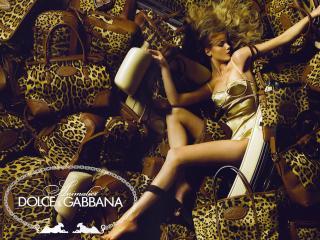 обои Caroline dolce & gabbana фото