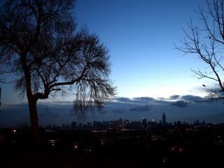 обои Ночные огни бессонного мегаполиса видны из тихого парка фото
