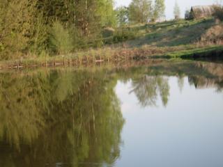 обои На озере фото