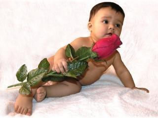 обои Малыш с розой фото