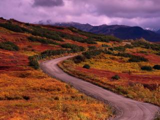 обои Пустынная дорога фото