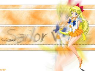 обои Sailor Venus фото