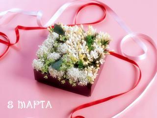 обои Цветы в коробочке к 8 марта фото