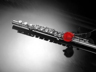 обои Red Rose & Flute фото