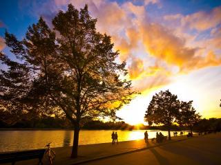 обои Парк на закате фото