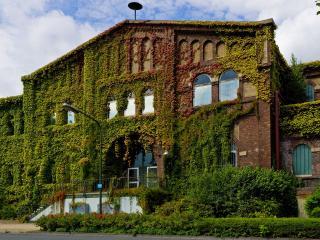 обои Здание заросшее травой фото