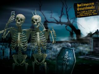обои Skeletons - moviestars фото