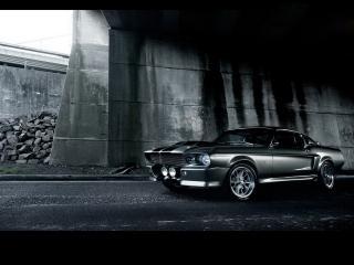 обои Shelby Mustang GT500 Eleonor фото