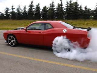 обои Dodge challenger-srt10 фото