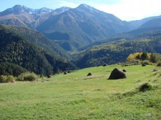 обои Аьпийские луга Кавказа фото