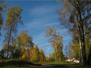 обои Осень в Руане фото
