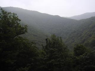 обои для рабочего стола: Холмы в пасмурную погоду