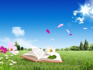 обои Читая книгу в солнечный, ветреный день на полянке фото