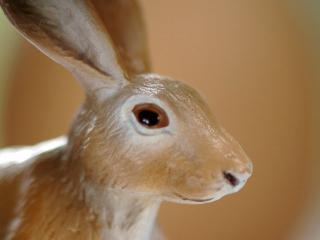обои Фарфоровая статуэтка пасхального кролика фото