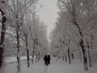 обои Город зимой фото