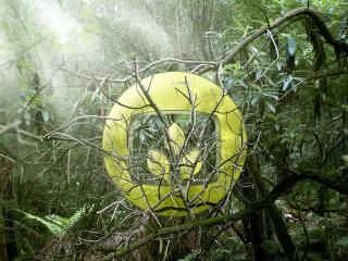 обои Магический шар с зелёным трилистником внутри фото