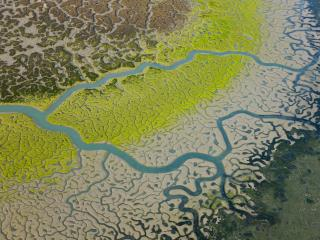 обои Вид из космоса на реку и прилегающие земли фото