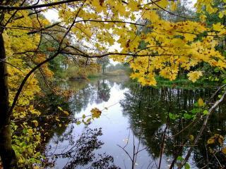 обои Осень прекрасна фото