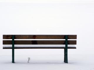 обои Пустынная скамейка в снежном парке фото