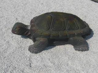 обои Скульптура Ботанический сад Минск черепаха фото