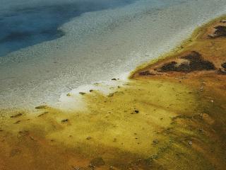 обои Илистый пляж фото