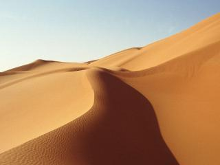 обои Прогулка по безжалостным, жарким пескам пустыни фото