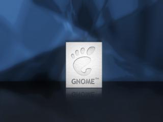 """обои Лапка на квадратике """"Gnome"""" на зеркальном полу фото"""