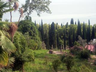 обои Абхазия. Место недалеко от Новоафонского монастыря фото