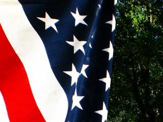 обои Флаг Соединённых Штатов Америки на фоне природы фото