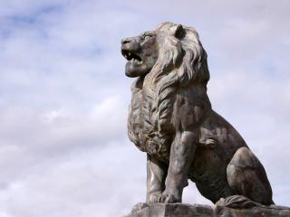 обои Старгородский, каменный лев фото
