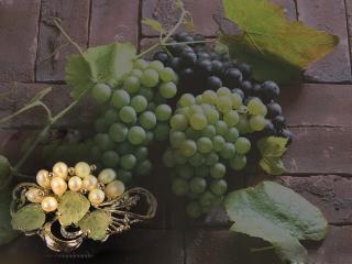 обои Брошь с виноградом фото
