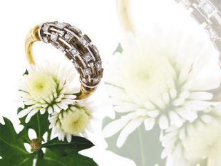обои Стильное кольцо фото