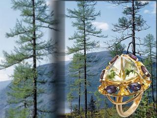 обои Перстень с крупным камнем фото