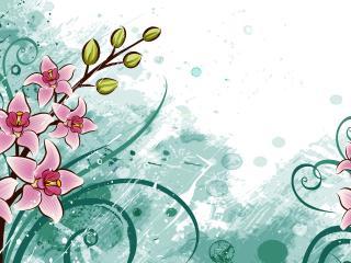 обои Цветы к 8 Марта фото