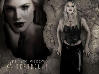 обои Black Widows Deadollz фото