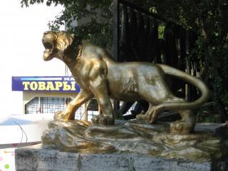 обои Серебряный тигр фото