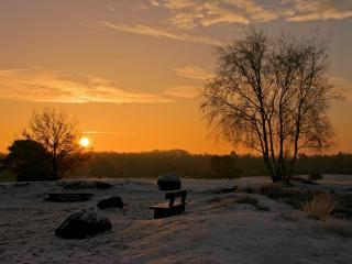обои Пустынный парк, занесённый снежным покровом фото