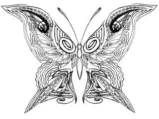 обои Butterfly inline фото